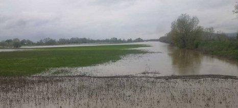 Εαρινή σπορά: Χάνεται ο Μάρτιος λόγω των πλημμυρών σε πολλές περιοχές