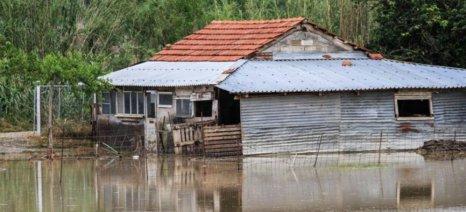 Καταστροφικές οι πλημμύρες στην Ηλεία - ξεκίνησαν οι δηλώσεις ζημιάς