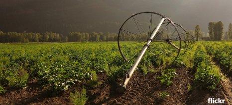 Καθησυχαστικό το Περιφερειακό Κέντρο Προστασίας Αχαΐας για τον περονόσπορο στην πατάτα