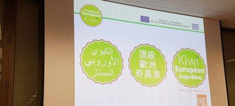 Το πρόγραμμα προώθησης ακτινιδίου Premium European Kiwi παρουσιάστηκε ως success story στις Βρυξέλλες