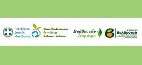 Η βιώσιμη γεωργία και ανάπτυξη μέσα από τους συνεταιρισμούς - 100 χρόνια αγροτοσυνεταιριστικού κινήματος στο Βελβεντό