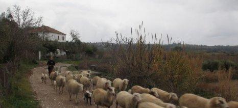 Ονομαστικές καταστάσεις πληρωμής για τη βιολογική κτηνοτροφία του 2015 στις Σέρρες