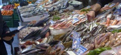 Ηράκλειο: Σε απόγνωση οι κάτοικοι γύρω από τα ψαράδικα