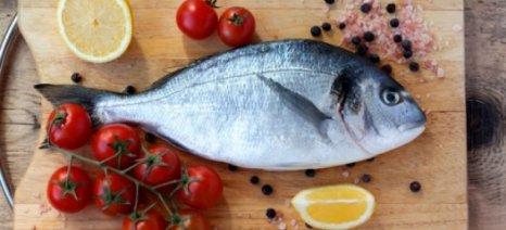Ποιά ψάρια περιέχουν υδράργυρο και είναι επικίνδυνα;