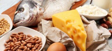 Ψάρι, τυρί και τροφικές αλλεργίες: Ποιά είναι η αλήθεια;