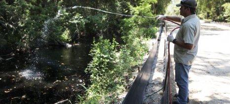 Σε αναμονή για τα κουνούπια η περιφέρεια Ανατολικής Μακεδονίας-Θράκης
