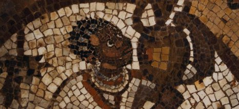 Σπόροι 1.500 χρόνων βρέθηκαν από τον αμπελώνα της Νεγκέβ στη Γάζα