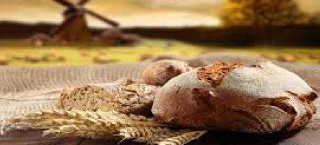 Πώς ήταν το ψωμί της νεολιθικής εποχής;