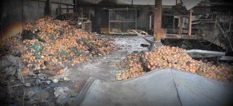 Ολοσχερώς κάηκε πτηνοτροφείο στο Κριεκούκι Θηβών