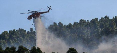Πυρκαγιά στην Εύβοια: Σε κατάσταση συναγερμού τρία χωριά, καίγεται δάσος σε ζώνη Natura