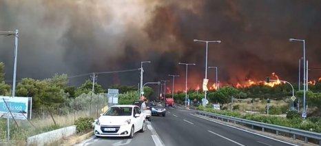 Βιβλική καταστροφή με δεκάδες νεκρούς από τις πυρκαγιές στην Αττική