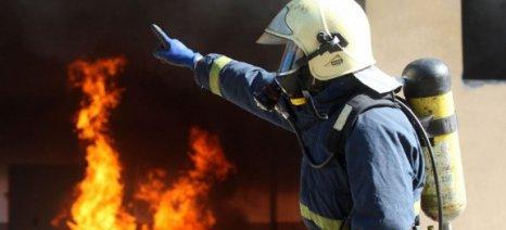 Φωτιά σε πτηνοτροφείο στο Βελεστίνο