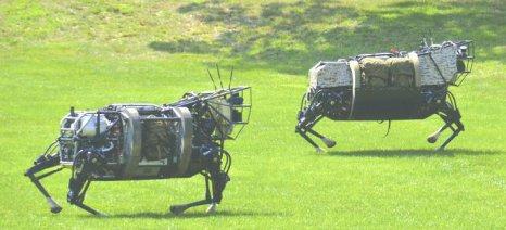 Αγελάδα-ρομπότ βόσκει στα ιρλανδικά λιβάδια και παράγει γάλα με ελάχιστο κόστος
