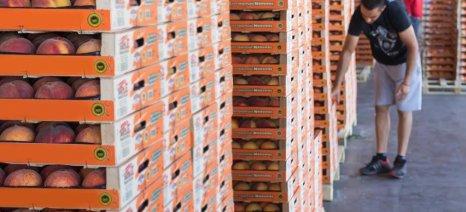Βαίνει προς υλοποίηση το μέτρο δωρεάν διανομής φρούτων για τη νέα εμπορική περίοδο