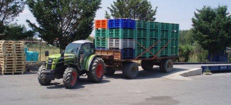 Κονσερβοποιοί: Μείωση της παραγωγής συμπύρηνου ροδακίνου κατά 29,4% το 2015