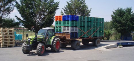 Ανακοινώθηκαν οι τιμές στο συμπύρηνο ροδάκινο: 0,28 ευρώ το κιλό παραδοτέα στο εργοστάσιο