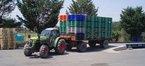 Επιμένει η ΕΚΕ στις χαμηλές τιμές στο βιομηχανικό ροδάκινο, με επιχείρημα την κακή ποιότητα, όπως υποστηρίζει