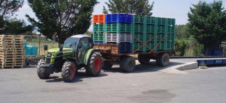 Μειωμένη η παραγωγή ροδάκινου στην Ευρώπη, με τα προβλήματα από τις βροχές να επιμένουν