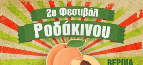 Κάλεσμα στo 2ο Φεστιβάλ Ροδάκινου Βέροιας από 15-18 Ιουνίου