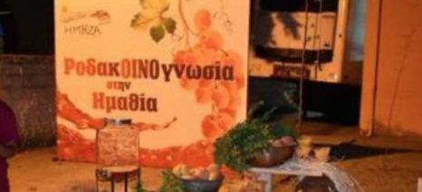 Ολοκληρώθηκε με επιτυχία η 4η Ροδακοινογνωσία στην Ημαθία