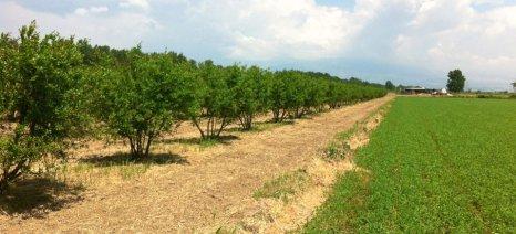 """Συνέδριο για όλες τις """"νέες καλλιέργειες"""" στις 26 και 27 Μαρτίου στην Αθήνα"""