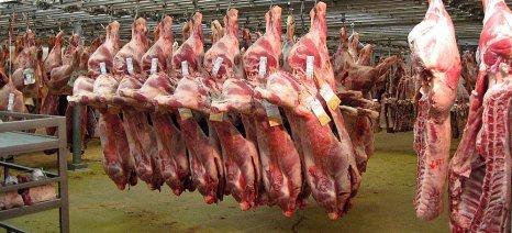 Ημερίδα για την «Αγορά Κρέατος» – Επίσκεψη 8 γερμανικών επιχειρήσεων του κλάδου στην Ελλάδα