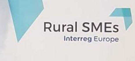 Rural SMEs: «Συνέργειες και Δικτύωση στην Αγροτική Επιχειρηματικότητα»