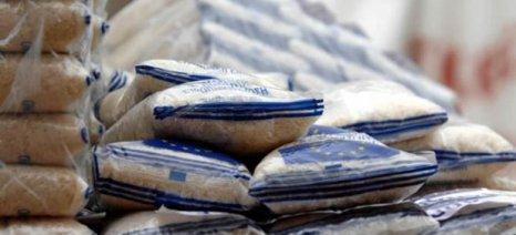 Σε εξέλιξη οι διεργασίες σύστασης Διεπαγγελματικής Ρυζιού - στόχος η απεξάρτηση από την αγορά της Τουρκίας