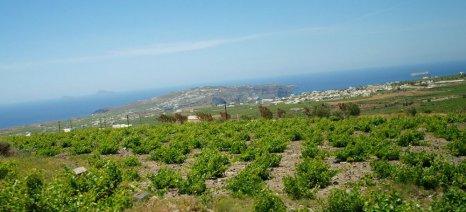Θα μειωθούν περαιτέρω οι καλλιεργούμενες εκτάσεις στην Ε.Ε. λόγω της αστικοποίησης, τα επόμενα 13 χρόνια