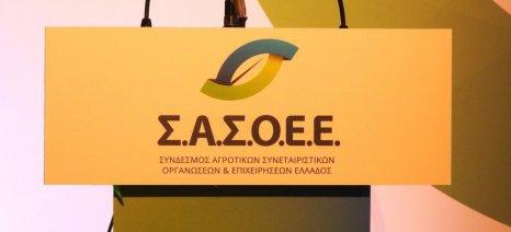 Πλήρες μέλος της ευρωπαϊκής συνομοσπονδίας συνεταιρισμών COGECA ο ΣΑΣΟΕΕ
