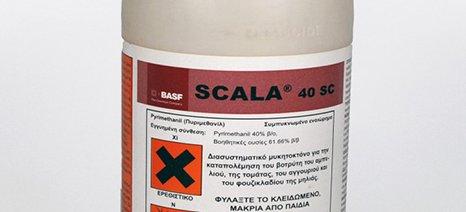 Άδεια διάθεσης στην ελληνική αγορά για το μυκητοκτόνο SCALA 40 SC της BASF