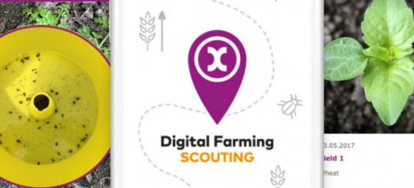 "Mε την εμπορική ονομασία xarvio™ εισάγει στην αγορά τα apps ψηφιακής γεωργίας ""Scouting"" και ""Field Manager"" η Bayer"
