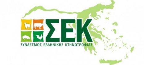 Υπόμνημα του ΣΕΚ προς τον Πρωθυπουργό με προτάσεις για την ανάκαμψη της κτηνοτροφίας