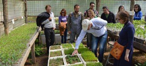 Σεμινάριο για αρωματικά φυτά και βότανα στο ΚΠΕ Κρεστένων