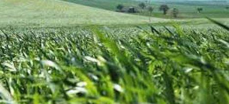 Εκδόθηκε η κατάσταση πληρωμής για τη νιτρορρύπανση του έτους 2015 στις Σέρρες
