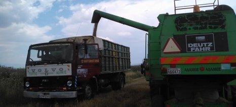 Μπλόκο από την Κομισιόν στις απευθείας πωλήσεις δημητριακών από τους αγρότες