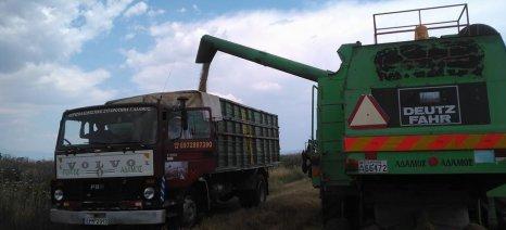 Η παγκόσμια παραγωγή δημητριακών πλησιάζει το ρεκόρ της προηγούμενης χρονιάς