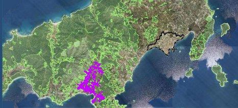 Την παράταση της υποβολής αντιρρήσεων για τους δασικούς χάρτες της Σκιάθου ζητά η Παπανάτσιου