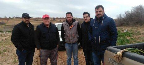 Συνεταιρισμός η μόνη λύση για τους νέους σκορδοπαραγωγούς Ξυλαγανής