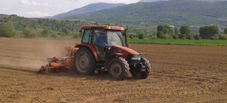 Όψιμες οι σπορές στο καλαμπόκι και τον ηλίανθο λόγω καιρού - κανονικά ευελπιστούν να σπείρουν οι βαμβακοπαραγωγοί