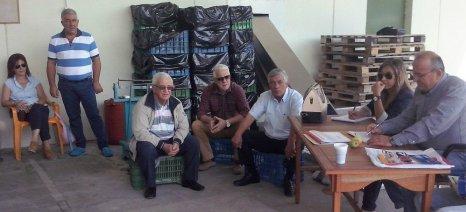 Συμφωνία για 4,56 ευρώ το κιλό ελαιολάδου, σε συσκευασίες πεντόλιτρων δοχείων, έκλεισε ομάδα παραγωγών στην Πιερία