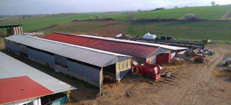 Αιτήσεις νομιμοποίησης στάβλων μέσα ή κοντά σε οικισμούς μέχρι 4 Δεκεμβρίου εφόσον προϋπήρχαν του ν. 4056/2012