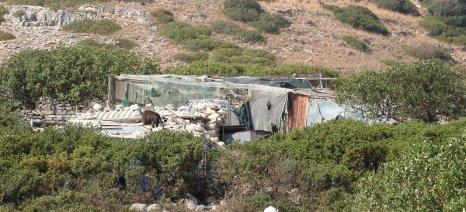 Νέα παράταση στις άδειες στάβλων με τροπολογία Φάμελλου που ψηφίστηκε