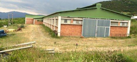Ορίστηκε ομάδα εργασίας με απόφαση Αποστόλου για νέο πλαίσιο αδειοδότησης στάβλων