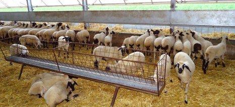 Κατάταξη πτηνοκτηνοτροφικών εγκαταστάσεων από το υπουργείο Περιβάλλοντος ανάλογα με το μέγεθος και την όχληση