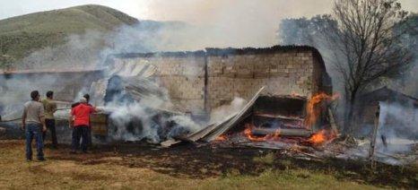 Κάηκε στάβλος με αποτέλεσμα να χαθούν 3 αγελάδες και 2.500 μπάλες τριφύλλι