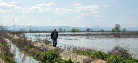 Μέχρι 9 Σεπτεμβρίου αιτήσεις για την εκμετάλλευση ζωνών του Στρυμόνα από αγρότες