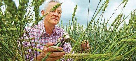 Η Bayer απέσπασε την κορυφαία διεθνή διάκριση για την προστασία του κλίματος και τη βιώσιμη διαχείριση των υδάτινων πόρων
