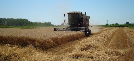 Μειωμένος είναι ο αριθμός των κατά κύριο επάγγελμα αγροτών που έστειλε στο υπουργείο Οικονομικών το ΥΠΑΑΤ