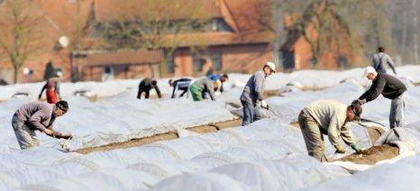 Σε Ευρώπη και Καναδά αναζητούν τρόπους για να έρθουν με ασφάλεια οι εποχιακοί εργάτες γης από Τρίτες Χώρες